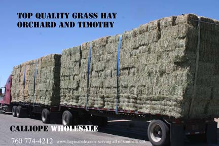 Orchard Hay Truck